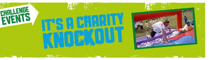 charity it's a knockout poster image